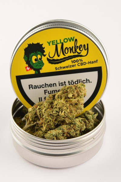 Yellow Monkey CBD Blüten